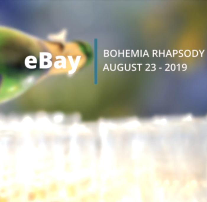 Company event on the Bohemia Rhapsody
