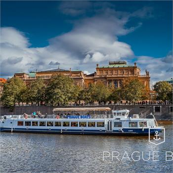 Sightseeing cruise on boat Labe